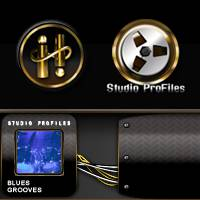 Drum Masters 2: Blues Multitrack Grooves<BR>Infinite Player library for Kontakt